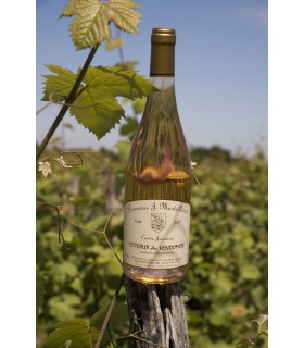 CTX VENDOMMOIS GRIS ROSE 75CL MARTELLIERE