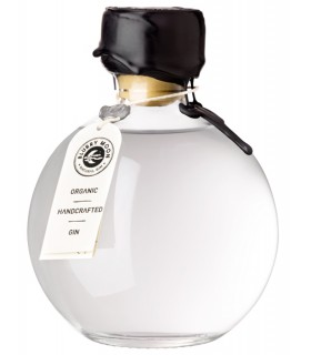 GIN BLURRY MOON GIMET 50CL