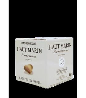 IGP COTES DE GASCOGNE DOMAINE HAUT MARIN BLANC 3L